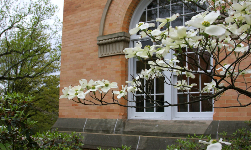 Flowers in front of Doane Administration building